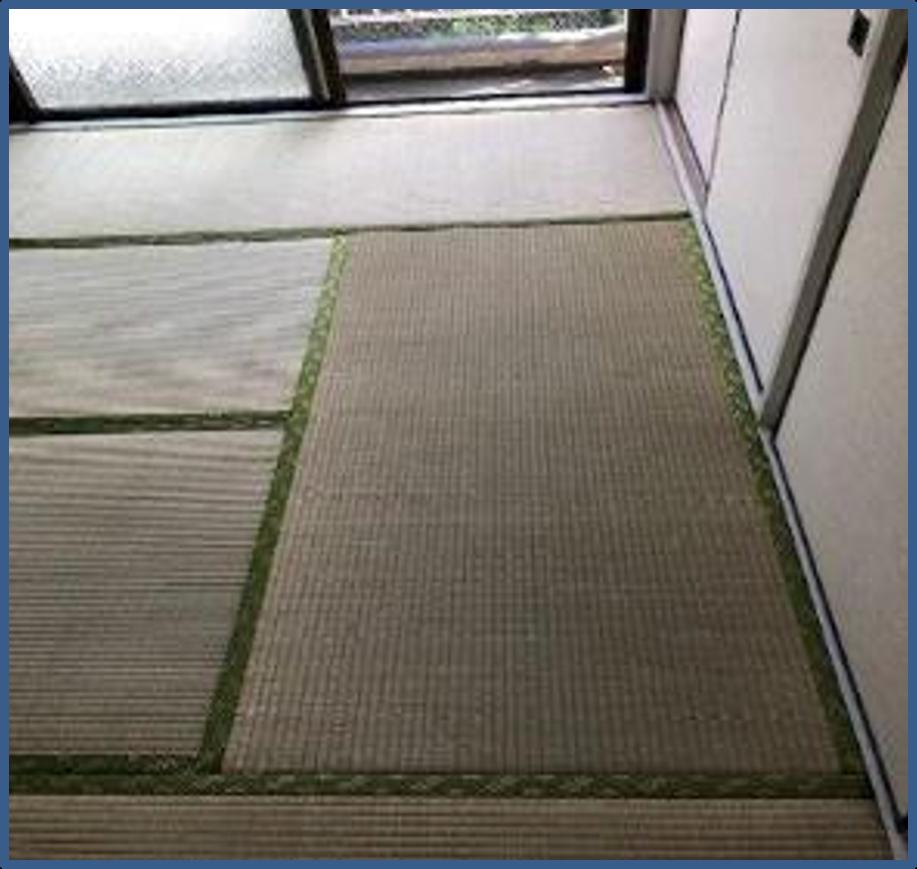 畳の張り替えリフォーム|相模原市南区のマンションにて内装リフォーム施工前